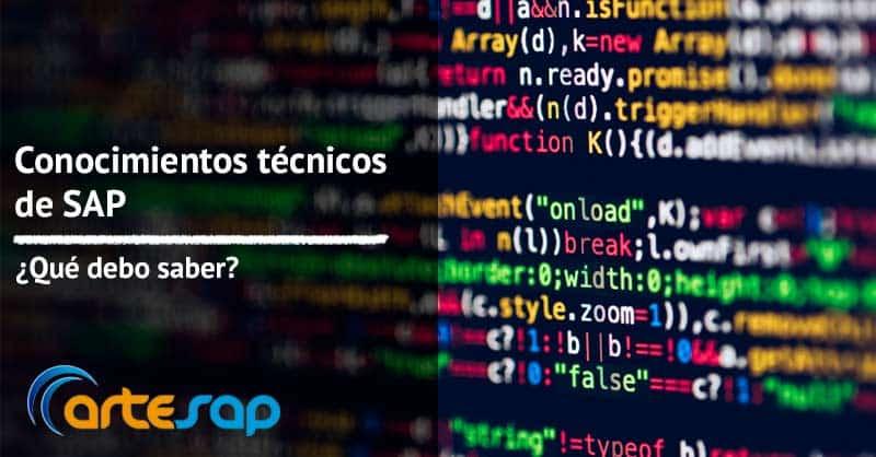 Conocimientos técnicos de SAP, ¿qué debo saber?
